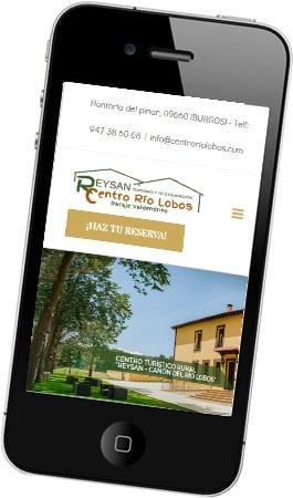 Desarrollo web responsive ReySan Centro Río Lobos
