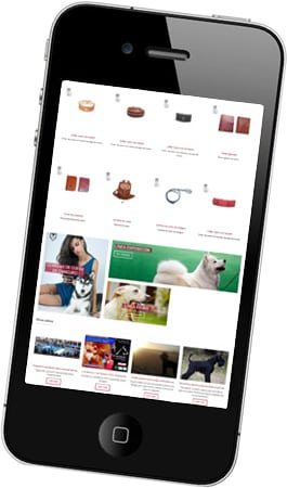 Desarrollo de página web para la boutique del artesano