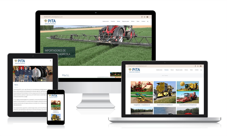 Diseño página web para Pita