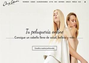 Diseño de tienda online Valladolid
