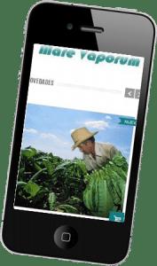 Diseño web responsive para Mareva Porum